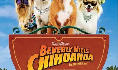 Beverly Hills Chihuahua - Bild 5