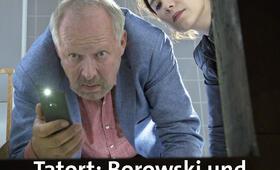borowski und das dunkle netz