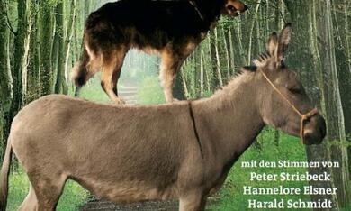Die Bremer Stadtmusikanten - Bild 1