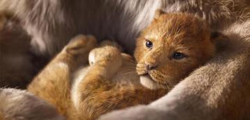 Der König der Löwen: Ist Disneys Remake ein Animationsfilm?
