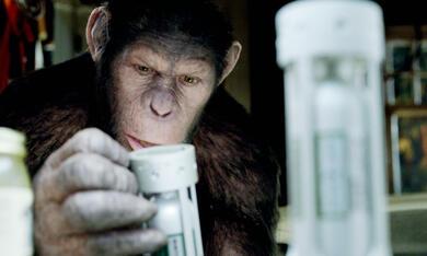 Planet der Affen: Prevolution - Bild 5