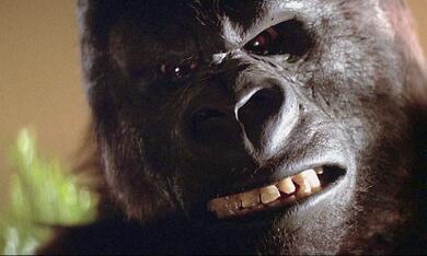 King Kong - Bild 3