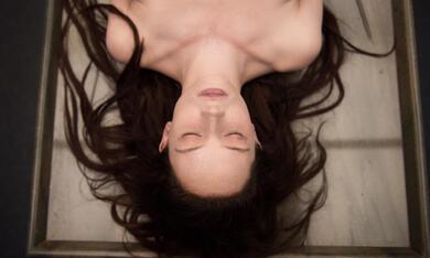 The Autopsy of Jane Doe mit Olwen Catherine Kelly - Bild 9