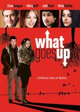 What Goes Up - Poster