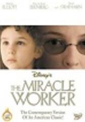 The Miracle Worker - Wunder geschehen