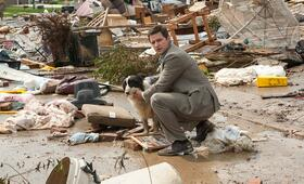 Storm Hunters mit Richard Armitage - Bild 4