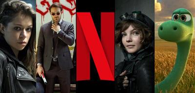 Das Netflix-Programm im August