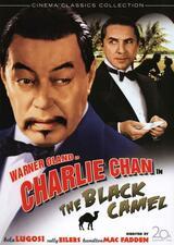 Charlie Chan: Der Tod ist ein schwarzes Kamel - Poster