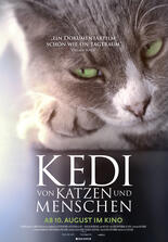 Kedi Stream Deutsch