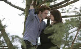 Twilight - Bis(s) zum Morgengrauen mit Kristen Stewart und Robert Pattinson - Bild 17