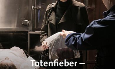 Totenfieber - Nachricht aus Antwerpen - Bild 1