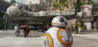 Dauergast im Park: BB-8
