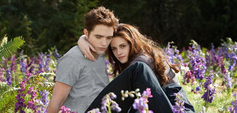 Robert Pattinson und Kristen Stewart in der Twilight- Saga