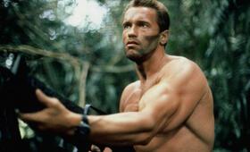 Predator mit Arnold Schwarzenegger - Bild 2