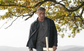 Rambo: Last Blood mit Sylvester Stallone - Bild 2
