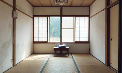 Zen for Nothing - Bild 4