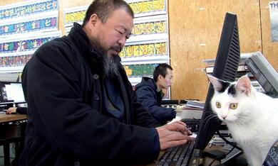 Ai Weiwei: Never Sorry - Bild 7