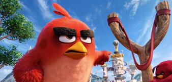 Die Angry Birds bringen ihre Waffen in Stellung