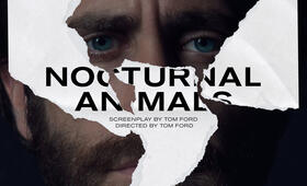 Nocturnal Animals mit Jake Gyllenhaal - Bild 28