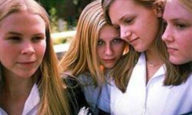 The Virgin Suicides - Verlorene Jugend - Bild 2