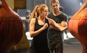 Die Bestimmung - Divergent mit Shailene Woodley und Theo James - Bild 4