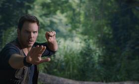 Jurassic World 2: Das gefallene Königreich mit Chris Pratt - Bild 6