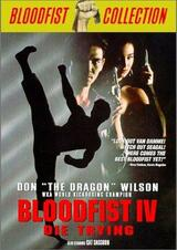 Bloodfist 4 - Deadly Dragon - Poster
