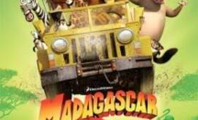 Madagascar 2 - Bild 14