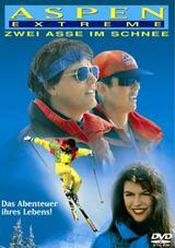 Zwei Asse im Schnee - Poster