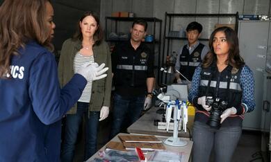 CSI: Vegas, CSI: Vegas - Staffel 1 mit Jorja Fox und Paula Newsome - Bild 12