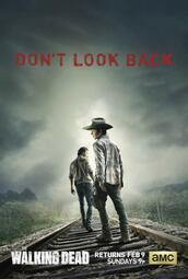 The Walking Dead Staffel 4 - Poster