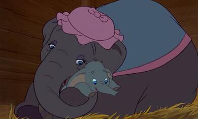 Dumbo, der fliegende Elefant - Bild 12