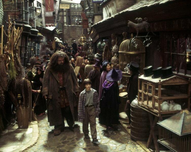 Harry Potter und der Stein der Weisen mit Daniel Radcliffe und Robbie Coltrane