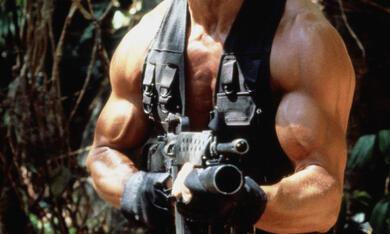 Predator mit Arnold Schwarzenegger - Bild 8