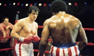 Rocky mit Sylvester Stallone - Bild 7