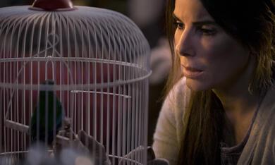 Bird Box mit Sandra Bullock - Bild 1