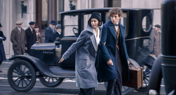 Katherine Waterston in Fantastic Beasts and Where to Find Them