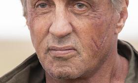 Rambo: Last Blood mit Sylvester Stallone - Bild 348