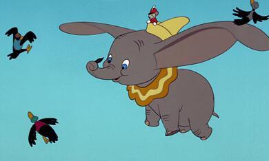 Dumbo, der fliegende Elefant - Bild 1