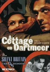 A Cottage on Dartmoor - Poster
