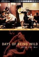Days of Being Wild - Poster