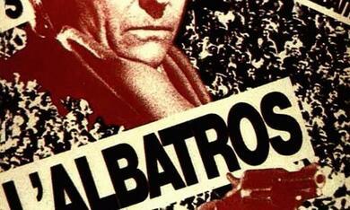Der Albatros - Bild 1