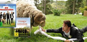 Bild zu:  Ramsey, das Schaf, bringt einiges durcheinander