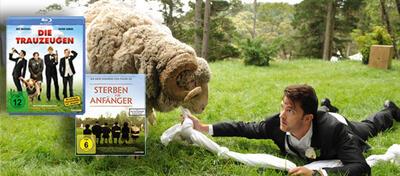 Ramsey, das Schaf, bringt einiges durcheinander