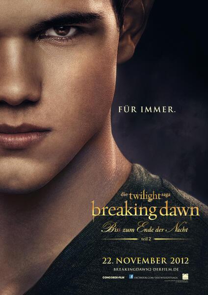 4. Teil Twilight