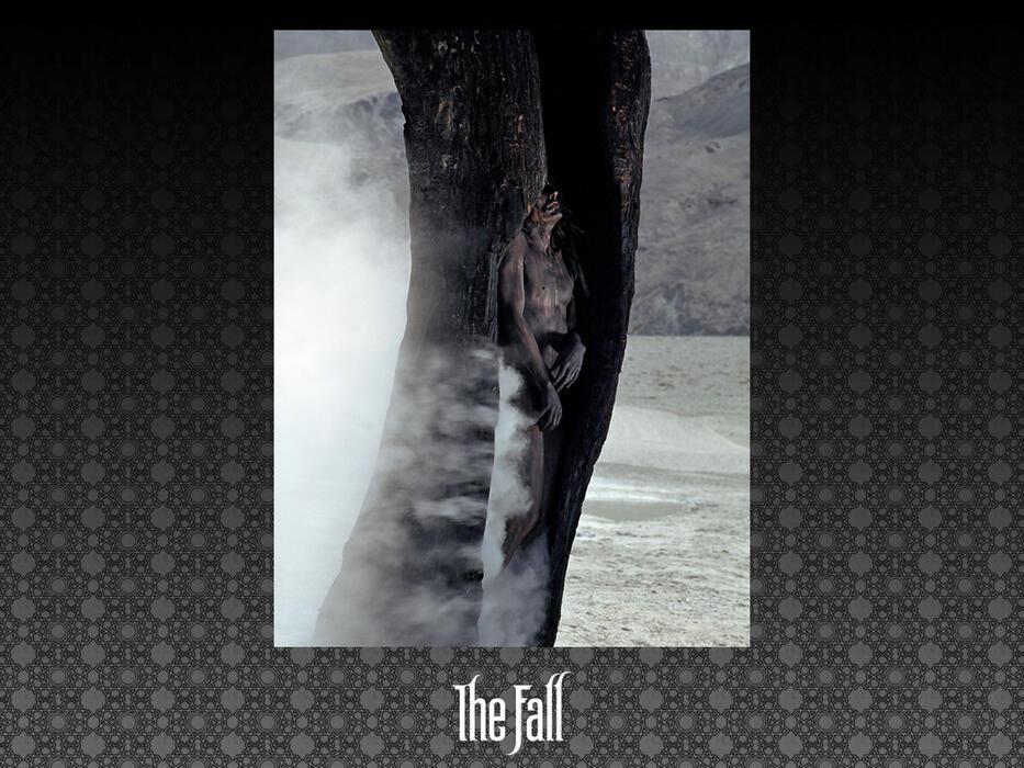 The Fall - Bild 5 von 33