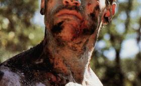 Predator mit Arnold Schwarzenegger - Bild 10