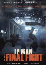Ip Man: The Final Fight - Poster