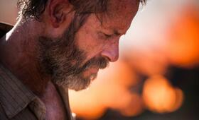 The Rover mit Guy Pearce - Bild 47