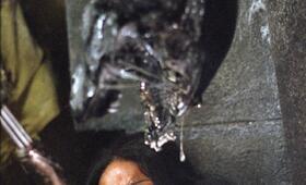 Alien vs. Predator mit Sanaa Lathan - Bild 2